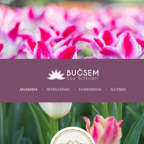Bugsemsusbitkileri.com websitesi yayına girdi